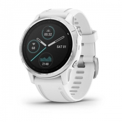 Fenix 6S silver withe Band...